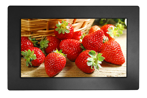 18.5 Inch Panel Mount LCD Monitor